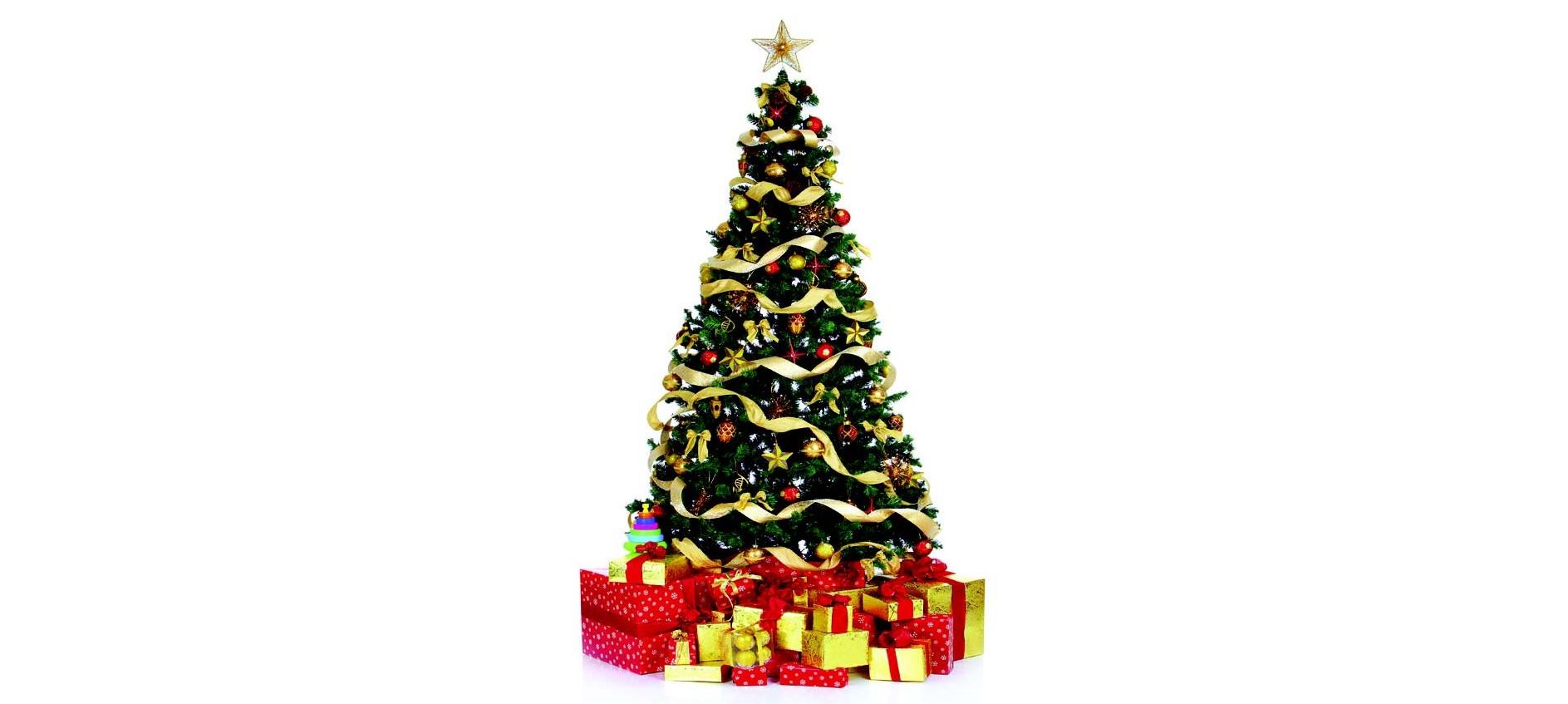 Christmas tree lighting set for Thursday at City Park   Copperas ...