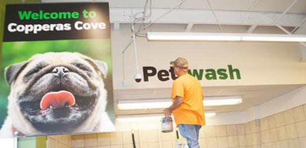 CCLP/LYNETTE SOWELL - A painter touches up the sign for the pet washing station at Pet Supplies Plus. The stores opens its doors today at 9 a.m.