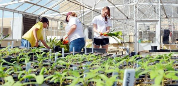 Student members of the Texas A&M University Horticulture Club prepare for the 32nd annual plant sale on campus March 29.