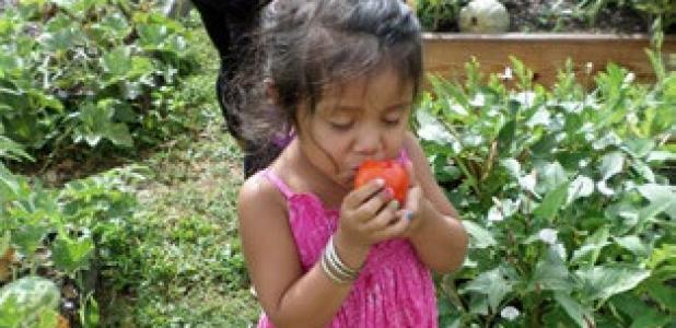 Kimberly Esparza's face expresses her approval of the taste of tomatoes eaten right off the vine at a community garden project at the Alamo Community Center. Kimberly was with her mother, Erica Esparza of Alamo, who was checking on the family's garden. Vegetable gardening classes will be held Aug. 11-14.