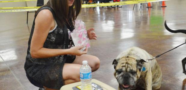Sonya Woodson gives her dog, Buster, a bone at Wednesday afternoon's pet clinic hosted by the Copperas Cove Animal Shelter.