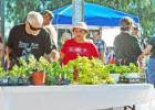 A Master Gardeners educational event and plant sale will be held Saturday In Georgetown.