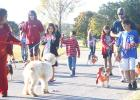 CCLP/BRITTANY FHOLER - The Gibson family and their five corgis interact with a dog dressed as Bill Clinton and his owner who was dressed as Hillary Clinton on the 1-mile route dog walk at the Howl O Ween Puppy Palooza held at Copperas Cove City Park Saturday morning.