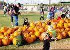 CCLP/PAMELA GRANT - Children pick out pumpkins at the Copperas Cove Fall-O-Ween Festival in City Park.