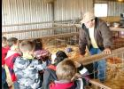 CCISD/Courtesy Photo - CCHS FFA member Colton Christman shares information about one of his livestock projects with CCISD gifted education first graders during a field trip to the CCISD Agriculture Barn. Christman raises chickens and hogs.