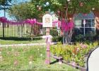 Courtesy Photo - The front lawn and entry of Clear Creek Meadows apartments was decked out in pink for last year's Pink Out the Town held by Pink Warrior Angels. Registration for the 2016 contest is going on now.
