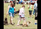 File Photo - Dogs and their owners participate in the Doggy Walk at the 2015 Pawzapalooza at Ogletree Gap. This year's event is set for Sept. 24.